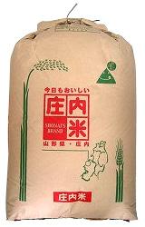 28年産新米 庄内産 コシヒカリつくばSD1号玄米