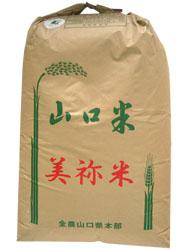 23年産 山口県産 こしひかり玄米