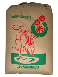 1年産新米 徳島県産 こしひかり玄米