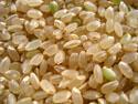 福島県産ひとめぼれ玄米