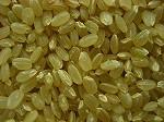 熊本県産こしひかり玄米